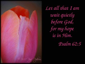 Leave Quietly to God