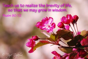 Teach us to realize the brevity of life