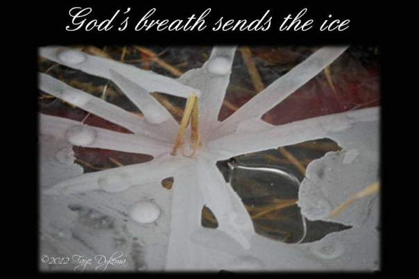 God's breath sends the ice - Job 37:10a