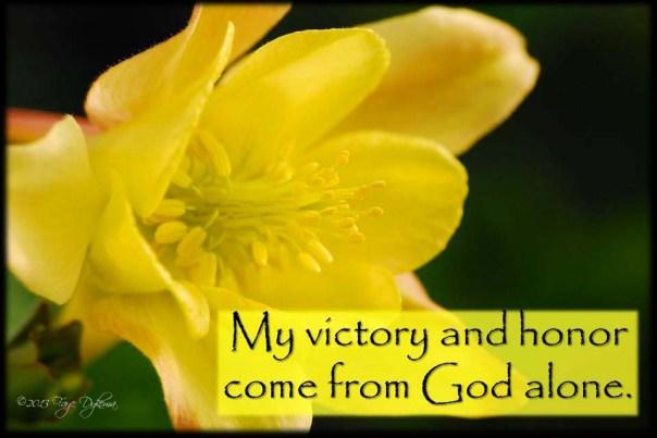 My Victory copy