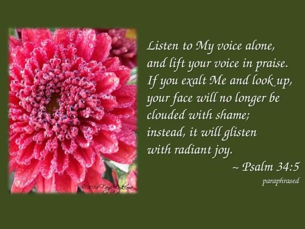 Psalm 34_5 par web