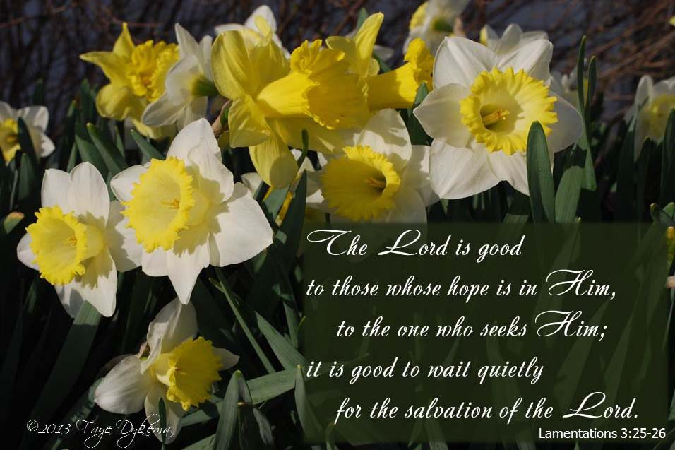 Seek the Lord | God's Abundant Blessings!