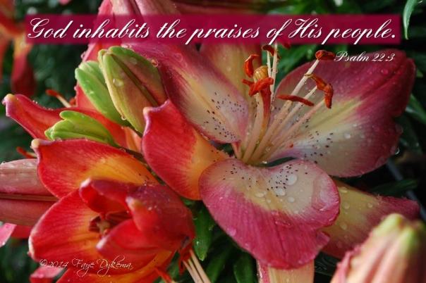 Psalm 22 3